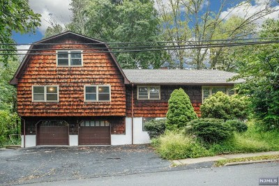 Bloomingdale Single Family Home For Sale: 119 Rafkind Road