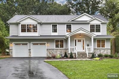Park Ridge Single Family Home For Sale: 14 Fairview Avenue