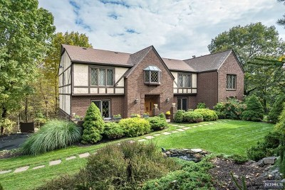 Morris County Single Family Home For Sale: 11 Smoke Rise Road