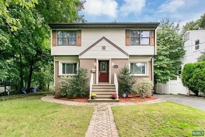 Ridgefield Single Family Home For Sale: 676 Elm Avenue