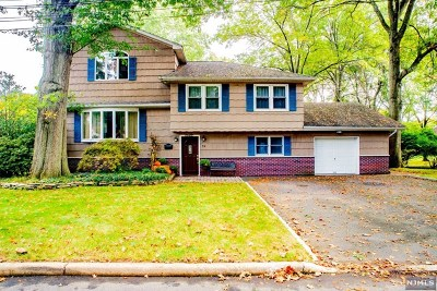 Cresskill Single Family Home For Sale: 72 Gilmore Avenue