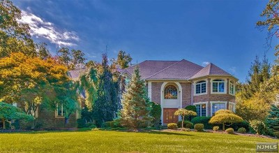 Mahwah Single Family Home For Sale: 43 Walsh Drive