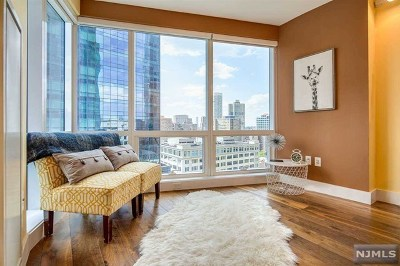 Jersey City Condo/Townhouse For Sale: 77 Hudson Street #1701