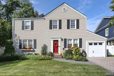 Paramus Single Family Home For Sale: 393 Chestnut Street