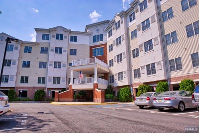 Paramus Condo/Townhouse For Sale: 189 Forest Avenue #403
