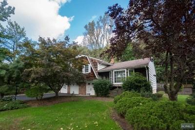 Paramus Single Family Home For Sale: 271 Springfield Avenue