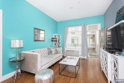 Jersey City Condo/Townhouse For Sale: 217 Newark Avenue #206