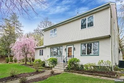 Ho-Ho-Kus Single Family Home For Sale: 169 North Franklin Turnpike