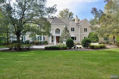 Saddle River NJ Single Family Home For Sale: $2,399,000
