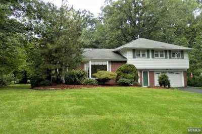 Morris County Single Family Home For Sale: 33 Douglas Drive