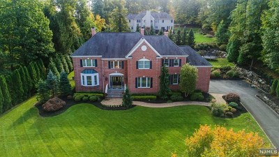 Passaic County Single Family Home For Sale: 6 Skyview Road