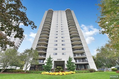 Hackensack Condo/Townhouse For Sale: 245 Prospect Avenue #6c