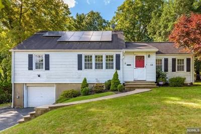 Essex County Single Family Home For Sale: 53 Cedar Grove Parkway