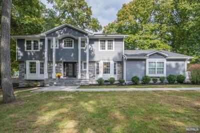 Essex County Single Family Home For Sale: 13 Highfield Terrace