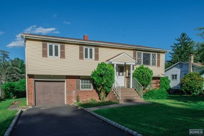 Rockaway Township Single Family Home For Sale: 42 Barry Drive