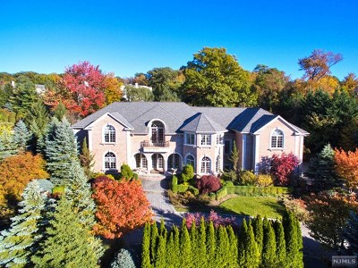 Cresskill Single Family Home For Sale: 110 Hoover Drive