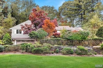 Hawthorne Single Family Home For Sale: 207 Emeline Drive