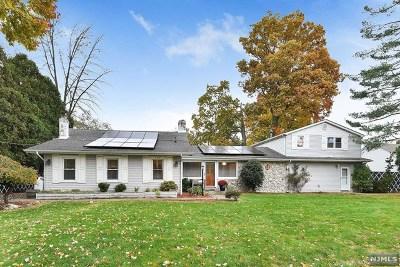 Little Falls Single Family Home For Sale: 100 Island Avenue