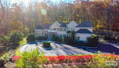 Morris County Single Family Home For Sale: 87 Mountainside Drive