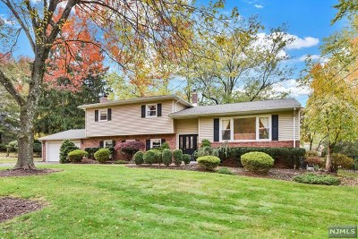 Wyckoff Single Family Home For Sale: 493 Eugene Way