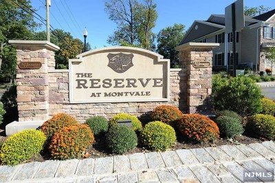Montvale Condo/Townhouse For Sale: 48 Autumn Way