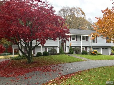 West Milford Single Family Home For Sale: 1674 Macopin Road