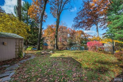 Morris County Single Family Home For Sale: 19 Indian Spring Trail