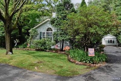 Rockaway Township Single Family Home For Sale: 961 Green Pond Road