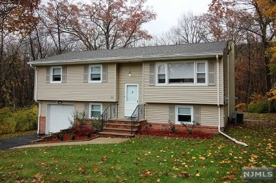 Ringwood Single Family Home For Sale: 381 Conklintown Road