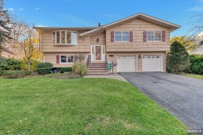 Paramus Single Family Home For Sale: 745 Walnut Street