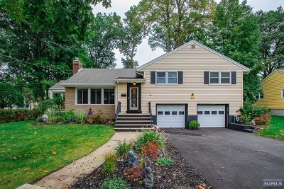 Oradell Single Family Home For Sale: 970 Oradell Avenue