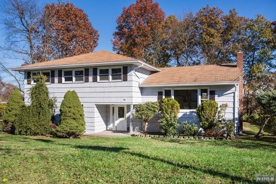 Passaic County Single Family Home For Sale: 49 Kossuth Place