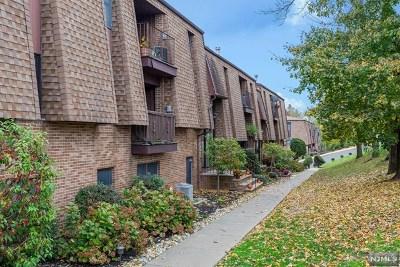 Hudson County Condo/Townhouse For Sale: 700 Schuyler Avenue #A13