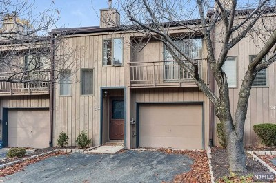 Essex County Condo/Townhouse For Sale: 1148 Stephanie Drive