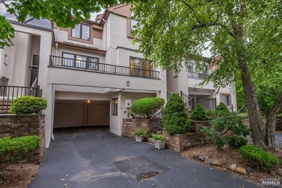 Essex County Condo/Townhouse For Sale: 47 Schindler Terrace