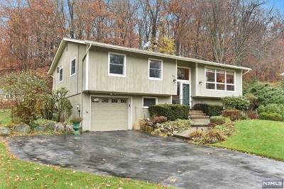 Ringwood Single Family Home For Sale: 97 Fieldstone Drive