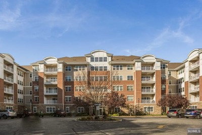 Wanaque Condo/Townhouse For Sale: 6102 Warrens Way