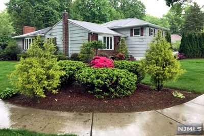 Oradell NJ Single Family Home For Sale: $690,000
