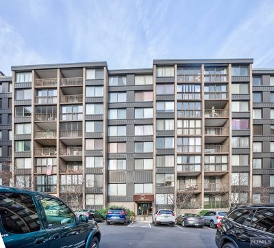 North Bergen Condo/Townhouse For Sale: 9060 Palisade Avenue #917