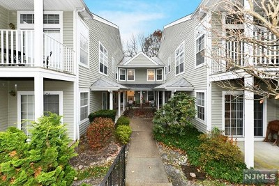 Mahwah Condo/Townhouse For Sale: 1167 Richmond Road