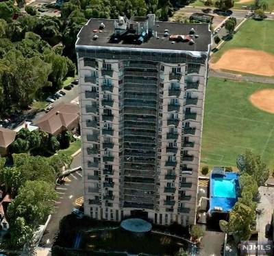 Hackensack Condo/Townhouse For Sale: 160 Overlook Avenue #9e2