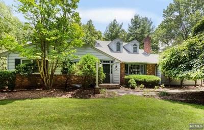 Saddle River NJ Single Family Home For Sale: $1,247,000