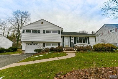 Bergen County Single Family Home For Sale: 9 Valley Brook Drive