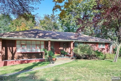 Bergen County Single Family Home For Sale: 169 Palisade Avenue