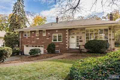Tenafly Single Family Home For Sale: 28 Greentree Terrace