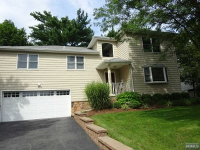 Bergen County Single Family Home For Sale: 113 Palisade Avenue