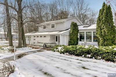 Rockaway Township Single Family Home For Sale: 3 Longview Drive