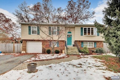 West Milford Single Family Home For Sale: 3 Millington Avenue