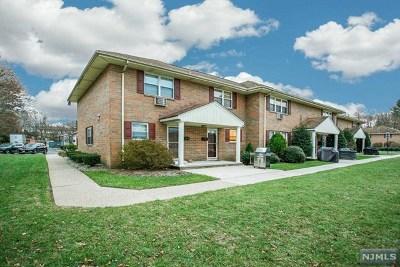 Park Ridge Condo/Townhouse For Sale: 163 North Maple Avenue #163