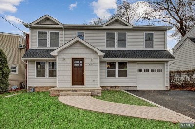 Bergenfield Single Family Home For Sale: 293 South Prospect Avenue